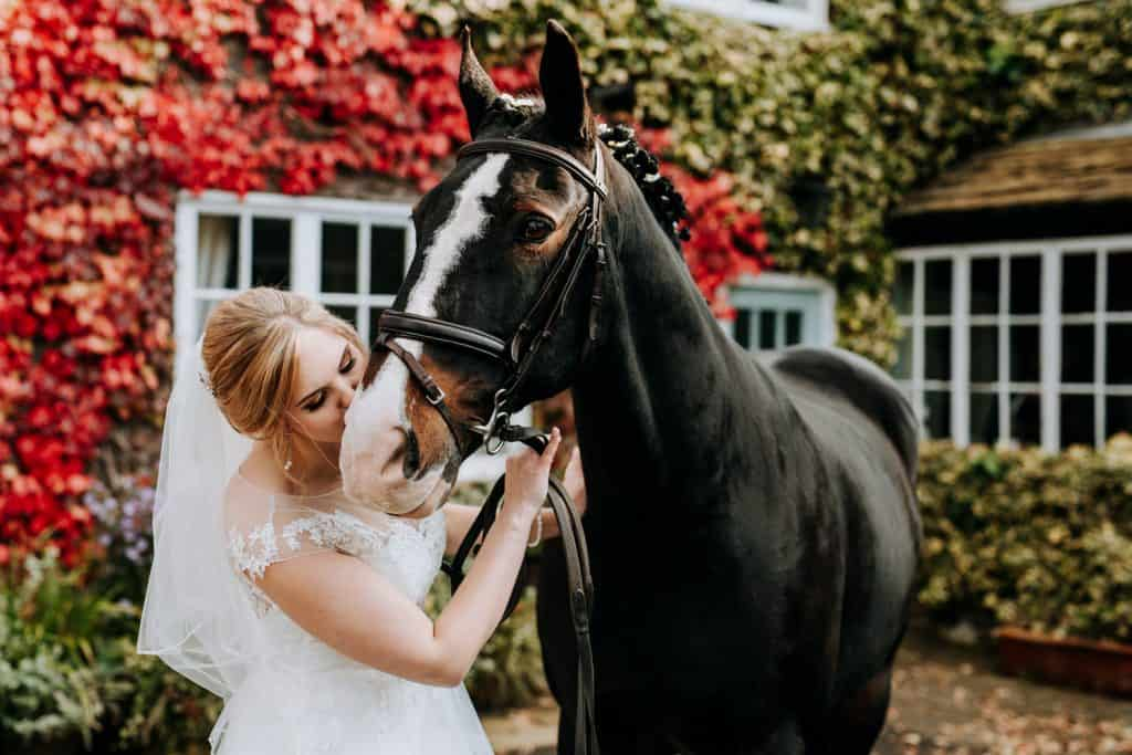 A surprise visitor - bride kisses her own pet horse on her wedding day