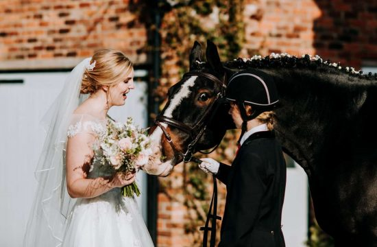 A bride and a horse on a wedding day